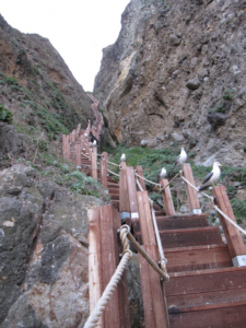 Very dangerous stairs on Dokdo West Islet 獨島 竹島