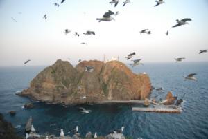 Seagulls nesting on Dokdo's West Islet  liancourt 독도 たけしま