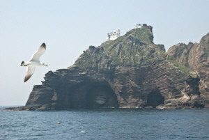 A seagull and Dokdo's East Islet caves 독도 獨島 竹島 たけしま